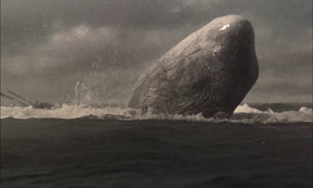 moby dick 3